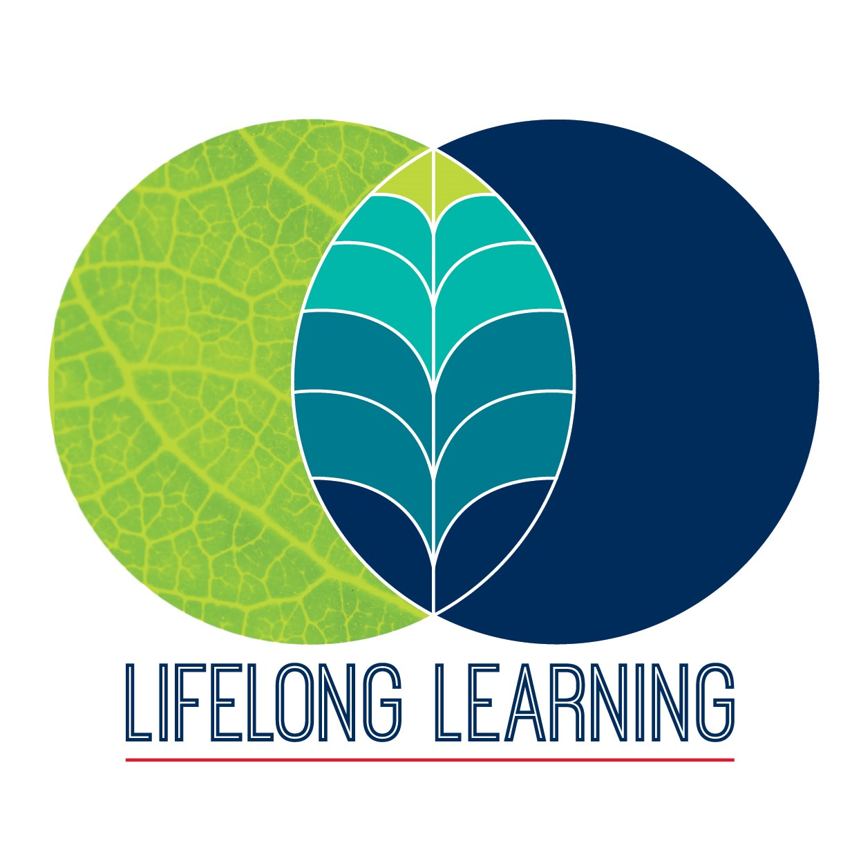 Spring 2018 Lifelong Learning courses released to the community