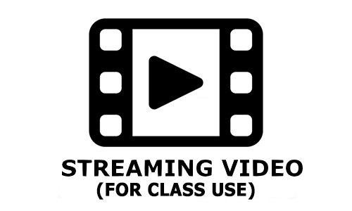 Streaming Video Options Icon