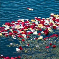 Sixth-annual Flowers on the Lake ceremony to honor victims of domestic violence